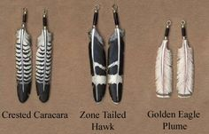 Carved Bone Feather Earrings : Crested Caracara, Zone Tailed Hawk, Golden Eagle Plume.