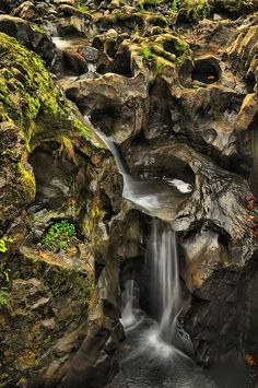 Tumwater Falls, Olympia, Washington | Flickr - Photo Sharing!