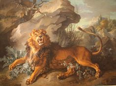Lion and spider, Jean-Baptiste Oudry.