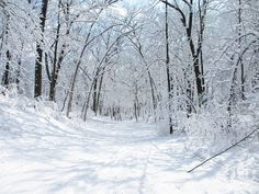 19 Natural Wonders in Wisconsin That Are Especially Breathtaking in Winter