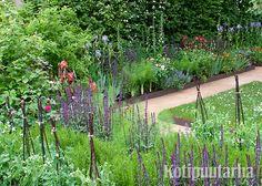 Ruosteisella metallireunuksella rajattuja näyttelyistutuksia Chelsea Flower Showssa Lontoossa. Chelsea Flower Show, Garden, Plants, Garten, Gardens, Planters, Tuin, Plant, Planting