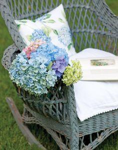 Apprezzata per i colori vivaci e i fiori vistosi, l'ortensia incarna la spensieratezza della bella stagione proclamando l'arrivo dell'estate con le sueenormi esplosioni di petali di seta e la tavolozza di un pittore dalle tonalità straordinarie. Idealeda recidere, l'ortensia