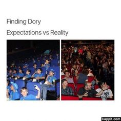 Finding Dory Expectations vs reality