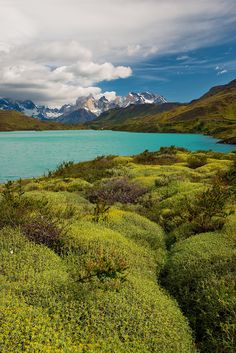 Cuernos Del Paine from Rio Paine, Patagonia