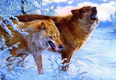 Lee Kromschroeder  - pair of wolves