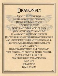 Prayer to Contact the Animal Spirit Guide, The Dragonfly – Witches Of The Craft®