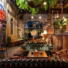 Cornerstone Bar and Food, Sydney hang plants