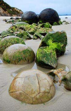 The Moeraki Boulders (Dragon Eggs) In Koekohe Beach, New Zealand - holidayspots4u