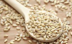 Cevada: um cereal nutritivo e cheio de benefícios | Saúde Um Desafio