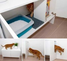 A cat litter box is not necessarily a nice thing to look at. A smart idea is to hide it somehow. Check out the cat litter box benches presented below. An aesthetic way to keep the litter box away from the sight. Best Litter Box, Hidden Litter Boxes, Diy Litter Box, Litter Box Enclosure, Modern Cat Furniture, Furniture Plans, Kids Furniture, System Furniture, Furniture Websites