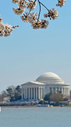Jefferson Monument in Washington DC