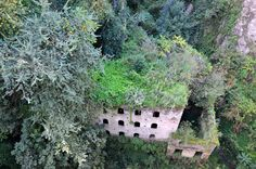 These mills, dating back to 900AD, were abandoned in 1866 when the rising humidity in the valley made it impossible for the women workers to endure the conditions.The micro-climate was, however, very favourable to a rare fern, which is why the ruins have been consumed in a layer of rich green flora. Tourists can easily wander down into the Valley of the Mills from street level in the town in Sorrento but the best shots can be taken from above.