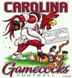 Wow! Go Gamecocks!!!