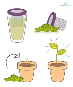 Happy Earth Day! 5 Ways to reuse tea leaves www.mysteepedtea.com/delayna