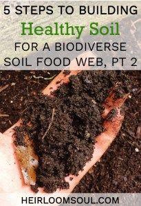 Building Healthy Organic Garden Soil - Increasing the Biodiversity of your Soil Food Web, Part 1 | Heirloom Soul | heirloomsoul.com