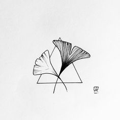 Gingko leaves #gingko #leaves #flower #floral #illustrator #illustration #drawing #sketch #design #triangle #geometry #minimal #simple #linework #doodle #art #artist #artwork #instaart #artistic #nature #ink #pen #tattoo #blackwork #blackworkers #blackandwhite #instafollow #evasvartur