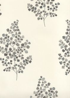 Angel Ferns wallpaper from Sanderson - 211997 - Charcoal