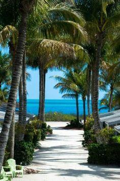 Book Waterside Inn on the Beach, Sanibel Island on TripAdvisor: See 519 traveller reviews, 432 candid photos, and great deals for Waterside Inn on the Beach, ranked #8 of 19 hotels in Sanibel Island and rated 4.5 of 5 at TripAdvisor.