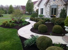 Perfect Green Velvet Boxwoods, budding knockout roses.  A beautiful Star Magnolia center piece.