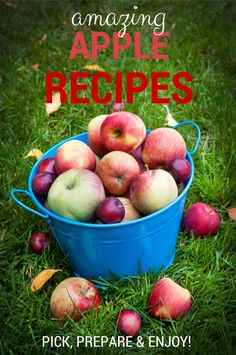 Apple Recipes For Fa