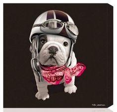 keladeco.com - #tableau deco teo racing noir chien #bouledogue 24*24cm, idée deco chien -TEO JASMIN