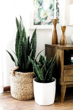 "Large Mid Century Modern Planter, Plant Stand, Planter with wooden stand . - Large Mid Century Modern Planter, Plant Stand, Planter Pot with Wooden Stand – 12 ""Ceramic Pot - Modern Planters, Wood Planters, Planter Pots, Diy Planter Stand, Garden Bulbs, Planting Bulbs, Wooden Plant Stands, Decoration Plante, Plant Decor"