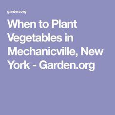 When to Plant Vegetables in Mechanicville, New York - Garden.org