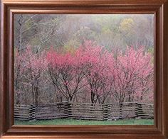 Impact Posters Gallery Redbud Tree Grove in Bloom Natchez Trace Parkway Landscape Wall Decor Black Framed Picture Art Print Art Prints, Landscape Wall Art, Poster Prints, Landscape Poster, Picture Frames, Framed Art Poster, Art, Pictures, Art Pictures