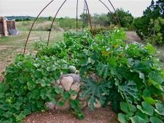 Keyhole gardens introduce a new method of compost creation to allow gardeners in arid regions to grow their own fresh fruits and veggies.