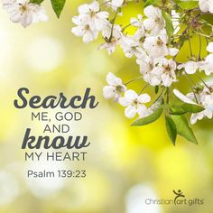 """Search me, God, and know my heart"" Psalm Favorite Bible Verses, Bible Verses Quotes, Bible Scriptures, Christian Post, Christian Quotes, Christian Messages, God Is Amazing, God Is Good, Psalms"