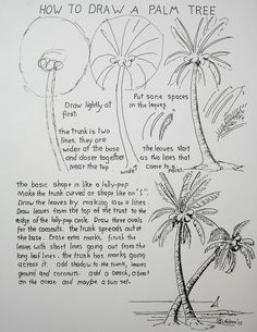 How to Draw Worksheets for The Young Artist: How To Draw A Palm Tree Lesson Worksheet