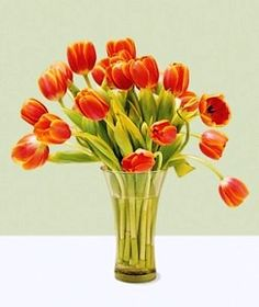 Tips to make flowers last longer. Test verdicts of various water additives to freshly cut flowers - good to know!