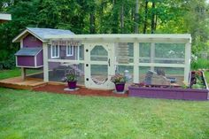 Beautiful chicken coop...lots of room to roam...safe from predators. ..any chicken should be happy to live here!