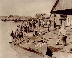 Pescari in Delta Dunarii (Născut în România: E mare fericire să ai un crez!) Danube Delta, Bird Species, Fashion History, Continents, Fresh Water, Exotic, The Past, Europe, World