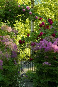 Finding My Secret Garden English Garden Design, Cottage Garden Design, Cottage Garden Plants, Beautiful Gardens, Beautiful Flowers, The Secret Garden, Home And Garden Store, Garden Gates, Dream Garden