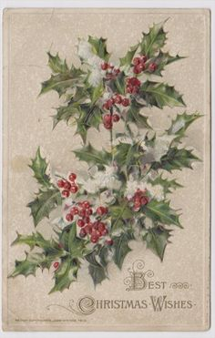 Holly Embossed Best Christmas Wishes 1913 Postcard