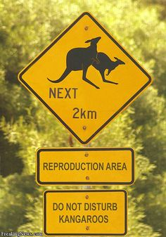 Australia  LOL!