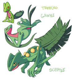 Treecko Grovyle Sceptile by Aphose on DeviantArt