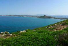 La Sardegna del Sinis, oltre la spiaggia di Is Arutas, cosa vedere - Gallery - Foto - Virgilio Viaggi