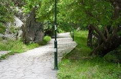 Acheron Springs - The Footpath Sidewalk, World, Plants, The World, Plant, Pavement, Planting, Planets, Peace