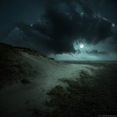 I bet this beach is right down from the spooky house.  ♥ it!