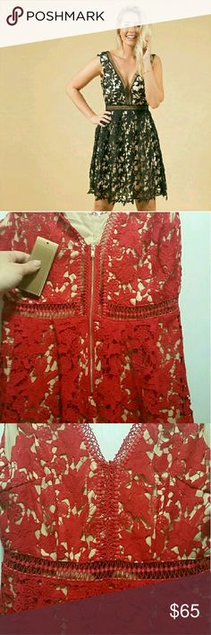 """Red Lace Dress Perfect for all seasons, all occasions.. Brand new with tags.. Size medium in my opinion true to us size 4... No rips stains or tears as this is brand new! Just been hanging in my closet & its too fabulous to stay there!  Right see thru mid section as shown with the stitches, all other top & bottom have nude underlay..   Approx: waist 14"""" Shoulder to bottom 34"""" Shouler to shoulder 12.5""""  No trades selling posh only 1st photo is stock from website to show fit of dress only…"""