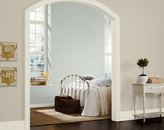 SW creamy, accessible beige, sea salt.  (sea salt is a toned down version of rainwash.) beautiful, soft color combination.