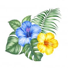 Тропические цветы и пальмы.   Premium Photo #Freepik #photo #flowers #water #green #blue Bday Background, Flower Clipart, Tropical Flowers, Dish Towels, Palm, Challenge, Clip Art, Digital, Plants