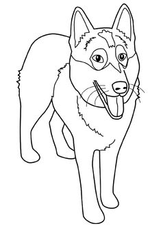 sled dog coloring pages Stock