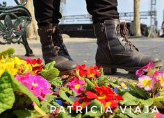 Do começo ao fim da viagem uma amizade verdadeira. Eu e as botinhas da @invernofiero Se eu guardei elas pra usar na próxima viagem? Não consegui continuo usando no Brasil esfriou eu uso. Pra quê sentir frio nos pés? Nunca mais.  #chile #americadosul #viagem #viaja #trip #santiago #cerrosantalucia #soufiero #voudefiero #botas #boots #snowboots #flores #flowers