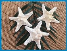 Men's Knobby Starfish Beach Wedding Boutonnieres, 3 - Groom cufflinks and tie clips (*Amazon Partner-Link)