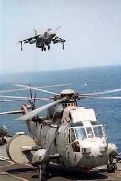 Royal Navy And Sea King, Falklands War