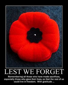 Remembrance Day. Remember all the men and women who have fought and died for us and who continue to do so.