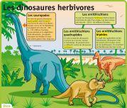 Les dinosaures herbivores - Le Petit Quotidien, le seul site d'information quotidienne pour les 6 - 10 ans ! Dinosaure Herbivore, Rustic Color Schemes, Dark Cave, Olafur Eliasson, Assassins Creed Odyssey, Man Repeller, Weird Pictures, French Language, Online Marketing